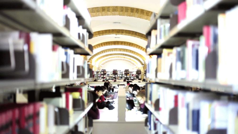 biblioteca-universidad-cadiz