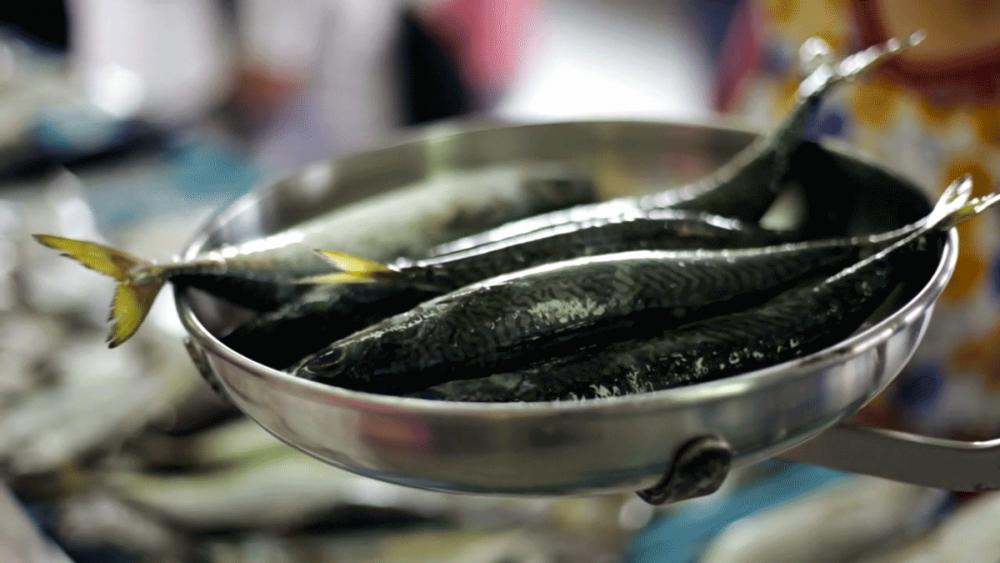 lonja-pescado-fresco