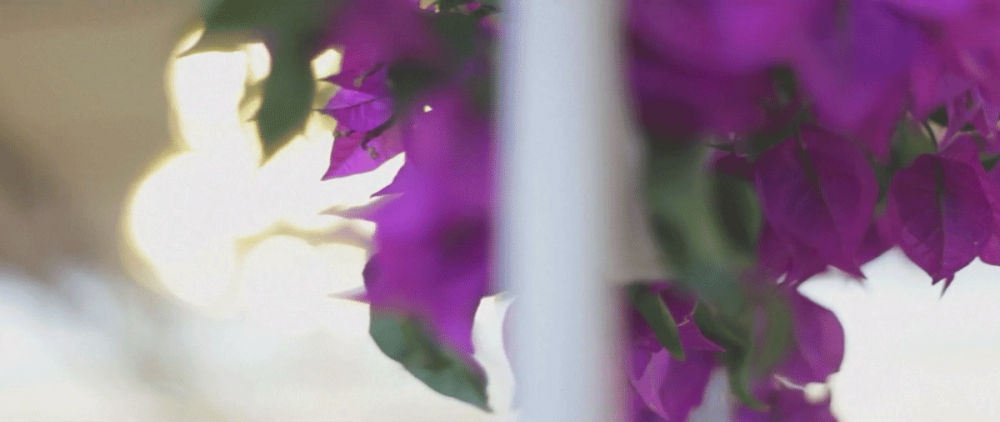 decoracion-flora-flores-caimanes-boda