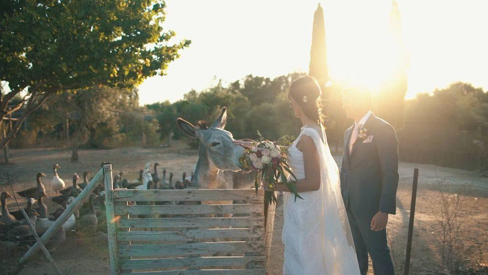 WeddingVideoAndalusia